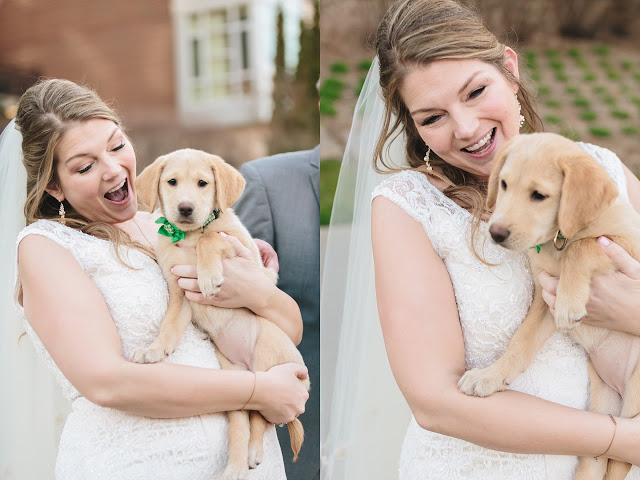 Bride in Wedding Dress with dog