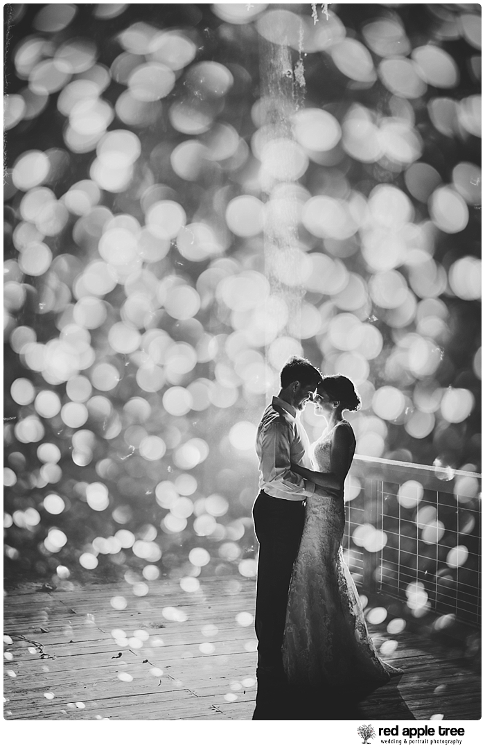 Black and White Wedding Portrait of Bride and Groom 2
