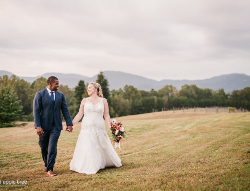 Fall Wedding – Cliffs at Glassy Chapel + Hotel Domestique
